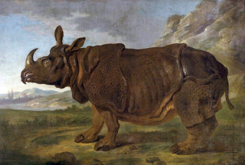 Κλάρα, η ξακουστή ρινόκερος σε πίνακα του 1749