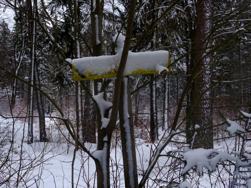 Παγωμένη πινακίδα στο δάσος / Frozen winter sign in the forest