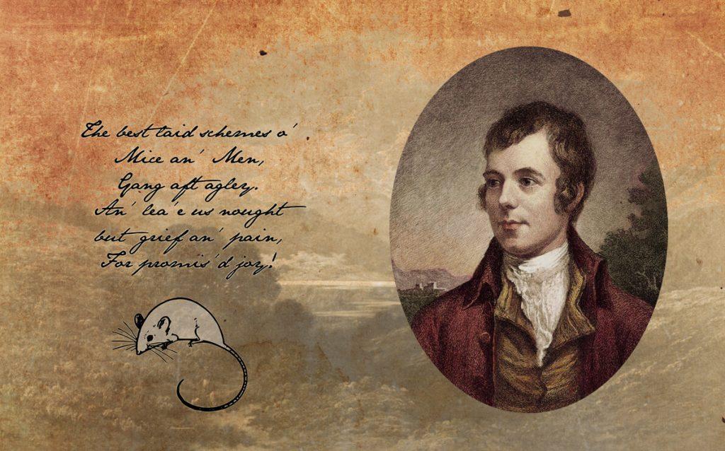 Ωδή σ' ένα Ποντίκι, ποίημα του Ρόμπερτ Μπερνς, παρουσίαση από το φονικό κουνέλι / To a Mouse, by Robert Burns