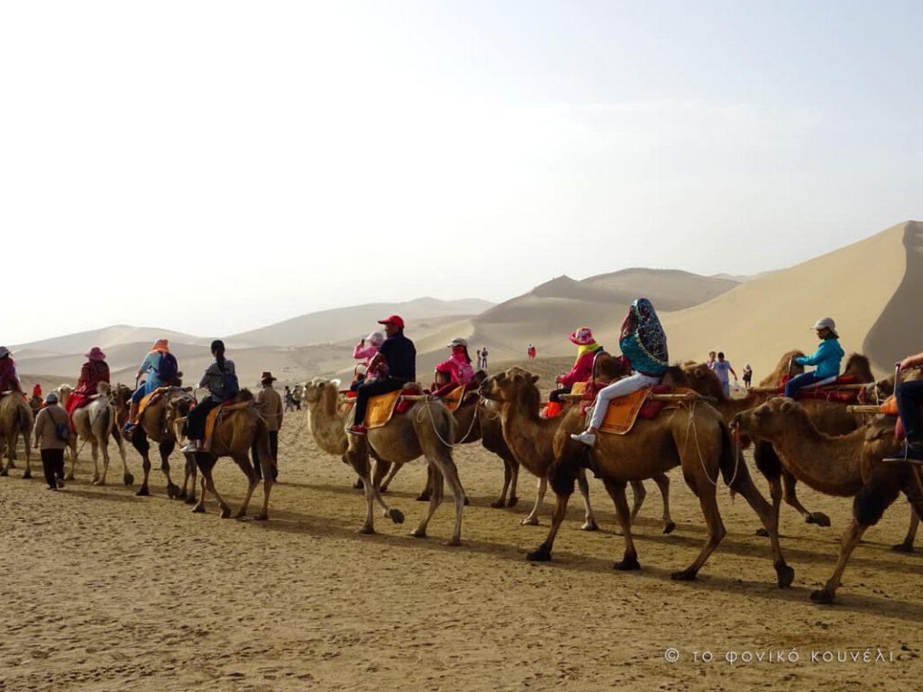 Κίνα, στον δρόμο του μεταξιού... Οι καμήλες στην έρημο / China, on the Silk Road