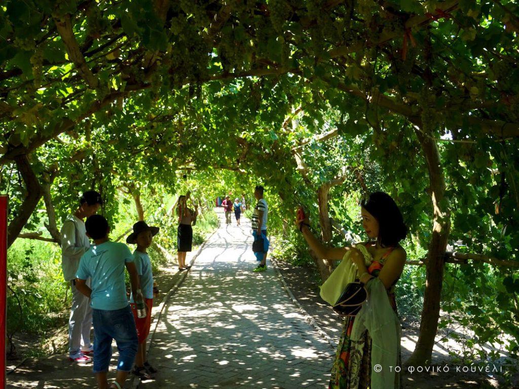 Κίνα, στο δρόμο του μεταξιού... στην Κοιλάδα των Σταφυλιών / China, on the Silk Road
