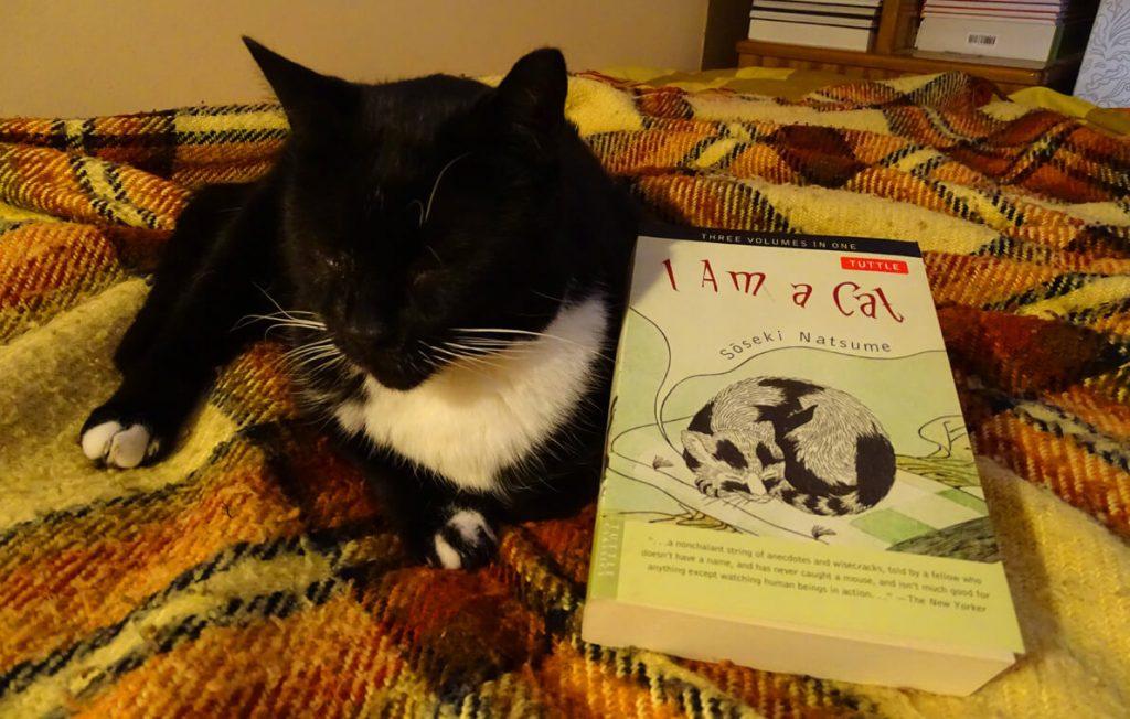 Είμαι Ένας Γάτος [I Am a Cat] του Νατσούμε Σοσέκι, πλάι στον Πιέρ - από το Φονικό Κουνέλι